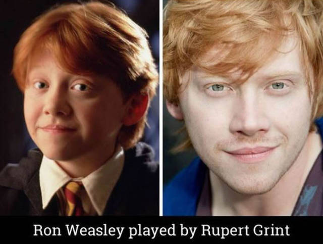 "A Fun Look at the Cast of ""Harry Potter"" Then and Now"