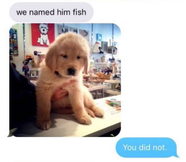 "Kids Get Their First Pet ""Fish"" But It's Not What You'd Expect"