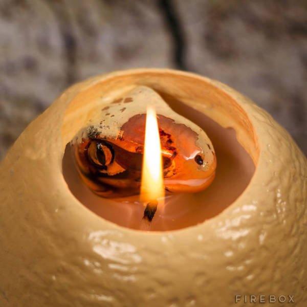 This Hatching Dinosaur Egg Candle Is the Coolest Thing Ever