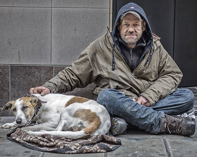 Dogs Don't Care about Money, All They Need Is Love