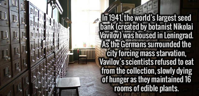 A Selection of Interesting Facts about Anything and Everything