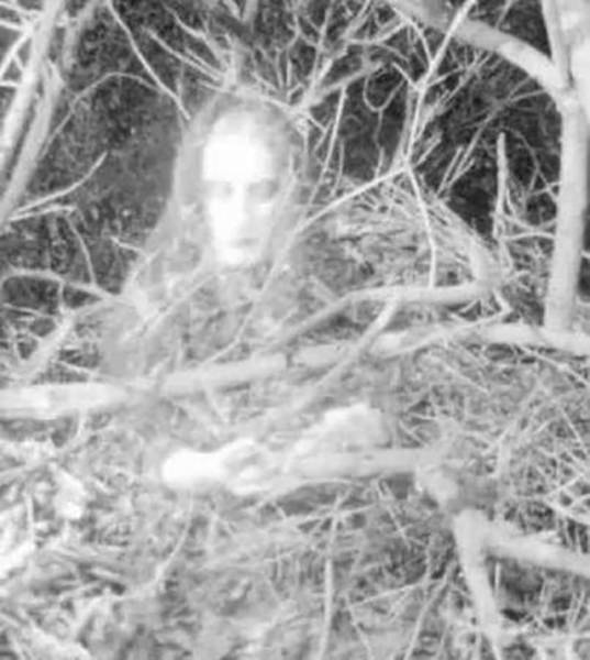 Do You Think These Spooky Pics Are Real? You Decide