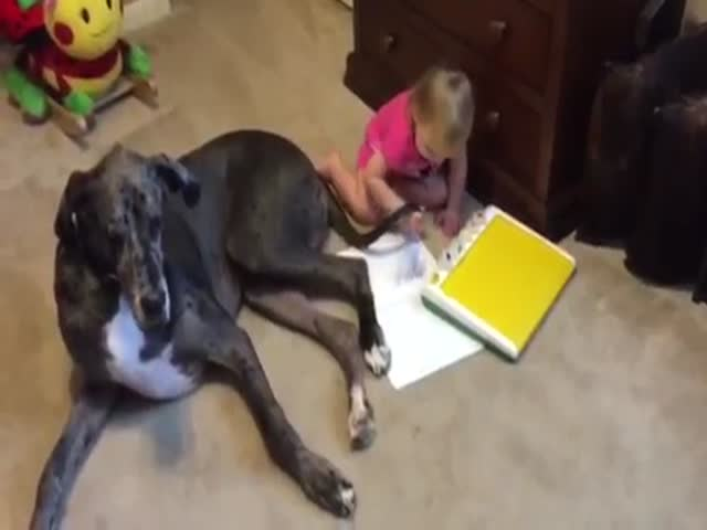 Accommodating Dog Lets a Little Girl Use His Tail to Paint a Picture