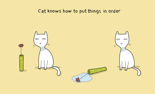 A Few Pluses to Having a Cat That Only Cat Owners Will Understand