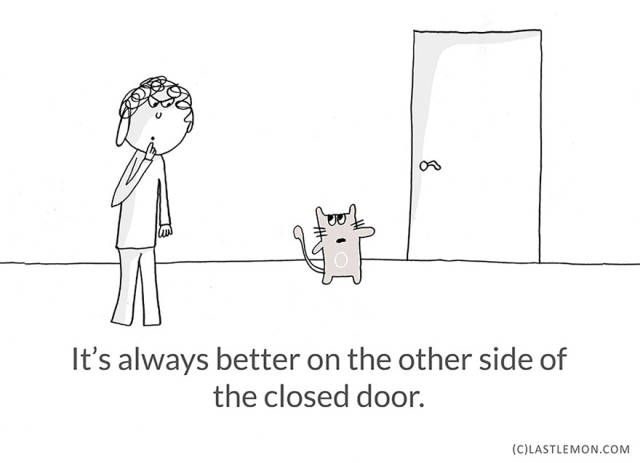 Surprising Life Lessons That You Can Actually Learn from Cats