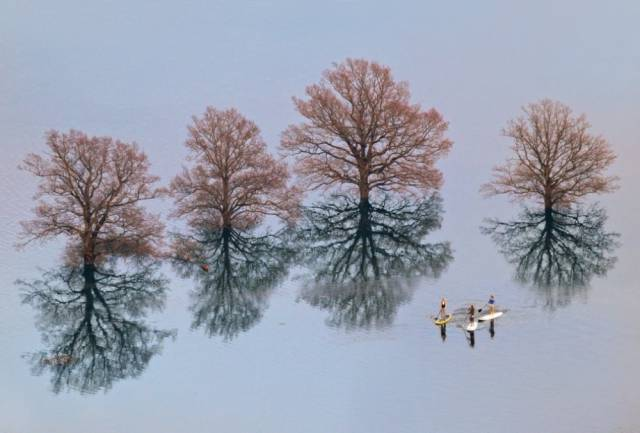 Astounding Photos That Look So Amazing That You Will Think They are Photoshopped