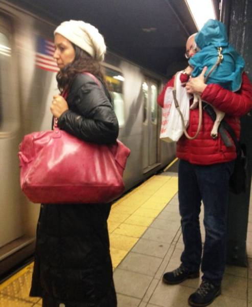 The Most Outlandish Things You Will Ever See on the NYC Subway