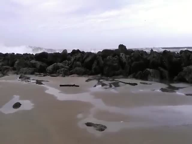 Massive Sneaker Wave Catches Onlookers by Surprise in Coos Bay
