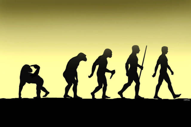 Funny Illustrations of Evolution of Man