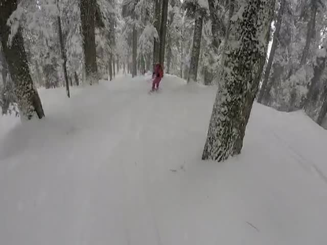 Incredible Encounter With A Rare Snow Leopard While Skiing