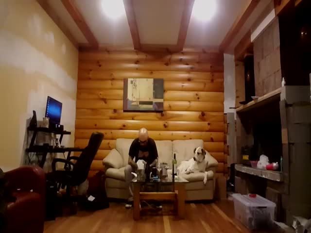 Dog Can't Help Looking While His Owner Is Eating
