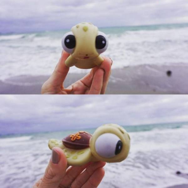 Different Odd And Interesting Things People Found On The Beach
