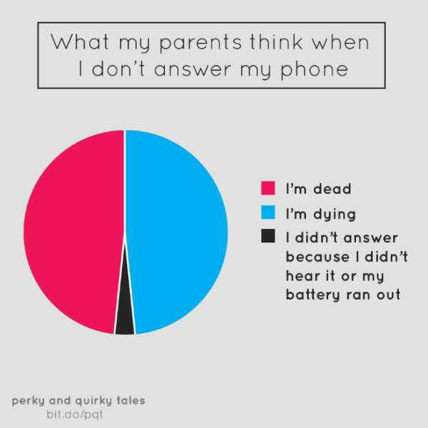 Humorous And Clever Piecharts That Are So True