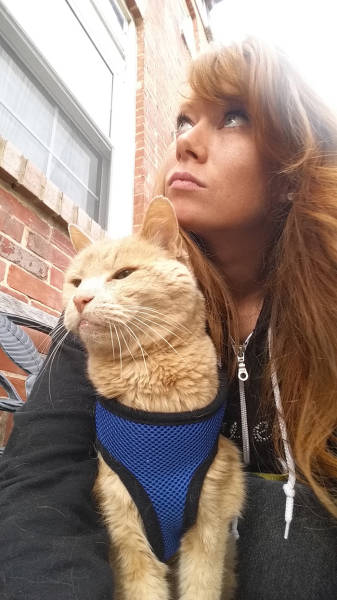 Woman Takes In A 21-Year-Old Cat To Make His Final Days As Happy As She Can