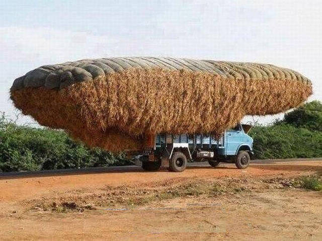 If It Can Fit, It Can Be Transported
