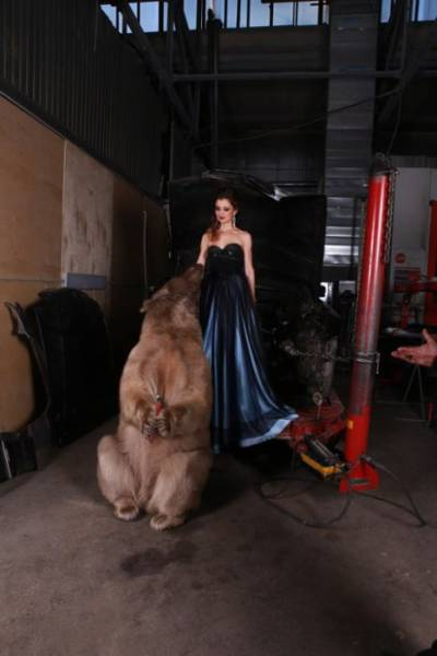 Russian Model Posing With A Huge Brown Bear In A Photo Shoot