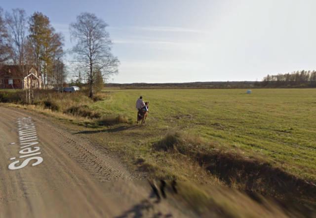 What Happens When A Horse Meets A Google Street View Car