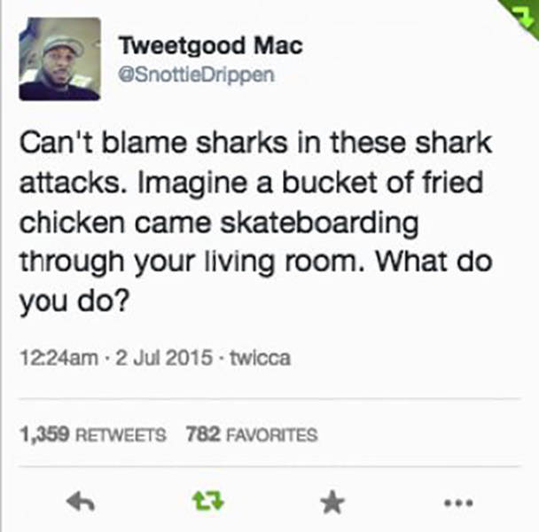 Funny Compilation Of Posts On Twitter
