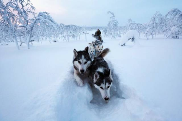 Living In The Arctic Has Its Perks French photographer Brice