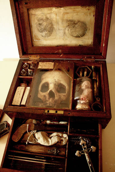 Macabre Art Works Were Discovered In The Basement Of An Old London Townhouse