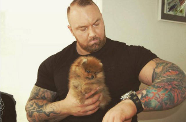 """The Mountain From """"Game Of Thrones"""" And His Tiny Dog"""