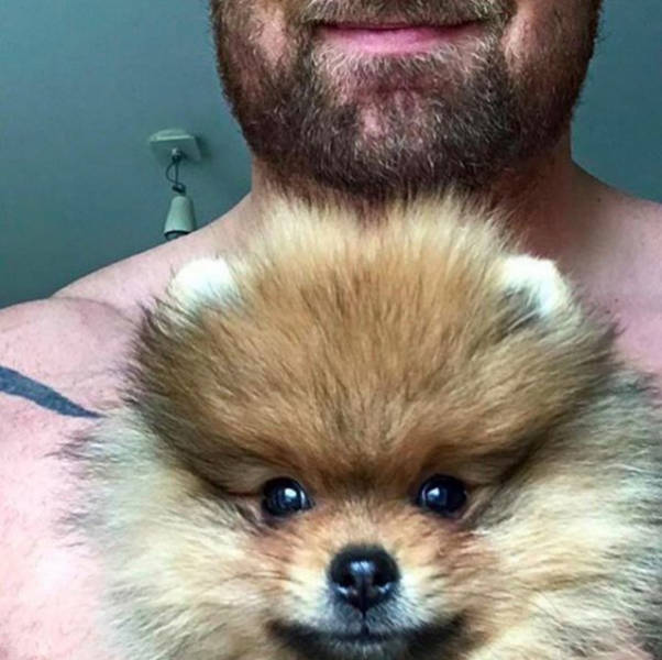 "The Mountain From ""Game Of Thrones"" And His Tiny Dog"