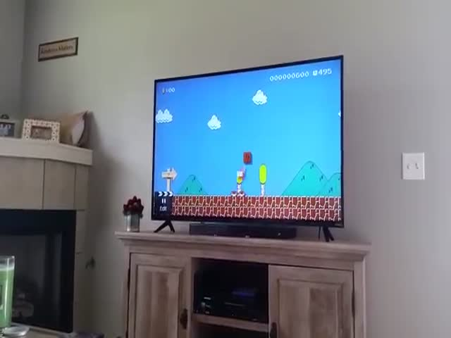 Guy Makes An Awesome Proposal With A Custom Mario Level