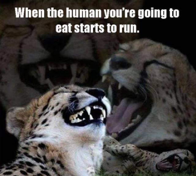 Dirty Humor Is The Best Kind Of Humor