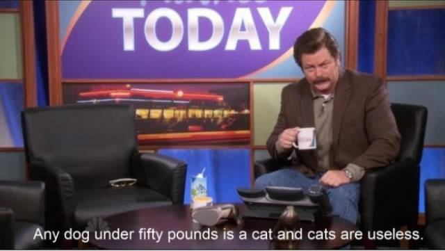 Literally Every Ron Swanson