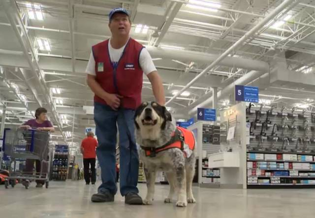 Hardware Store Hires A Man And His Service Dog In Canada