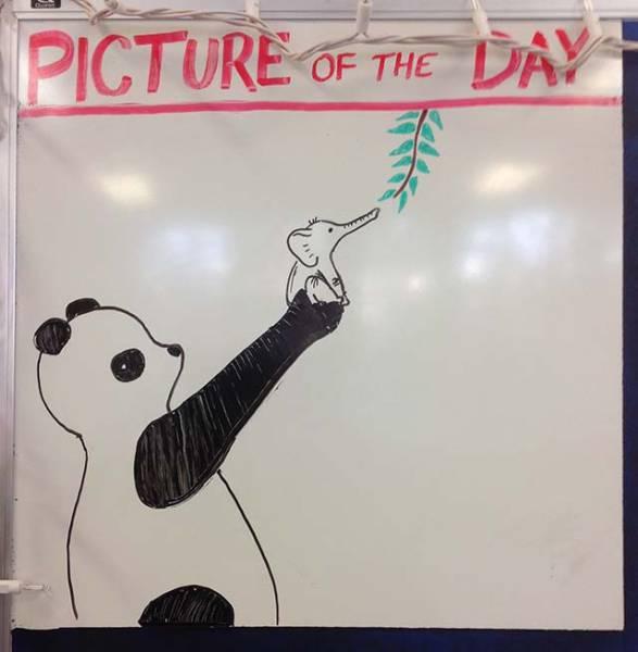 History Teacher Exercises His Artistic Bone On The Whiteboard