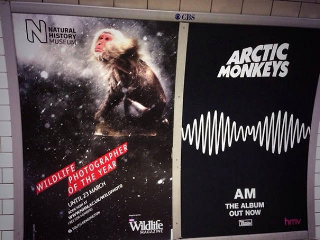 Funny Placement Coincidences Failed So Hard That They Actually Won