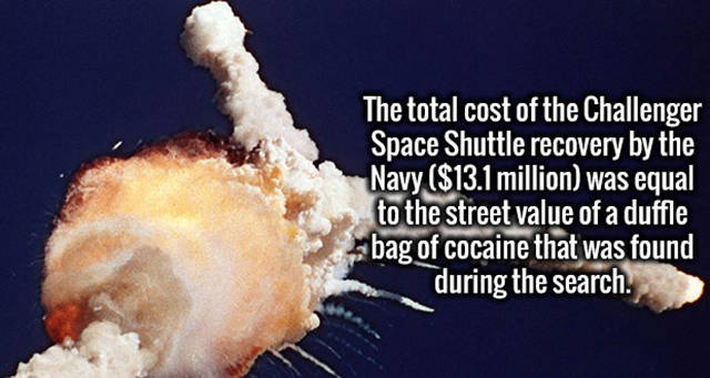 Feed Your Brain With These Cool And Interesting Facts