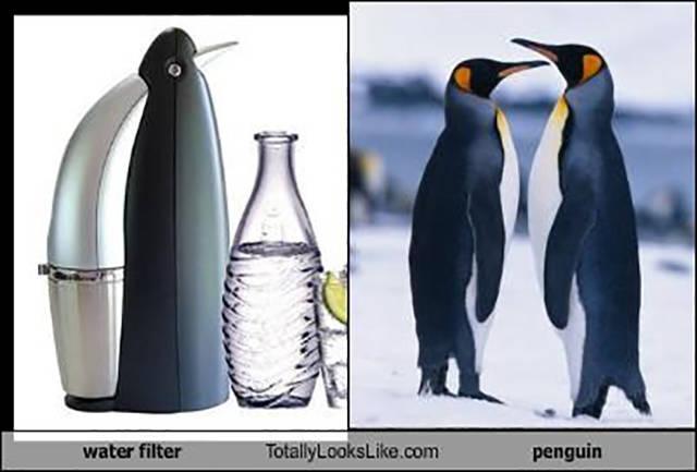 Things, People, Cartoons That Look Hilariously Alike