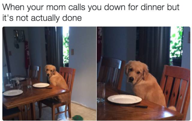 Tweets That Sum Up Family Life Just About Right