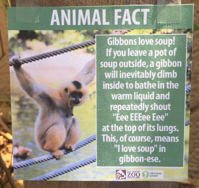 Fake Animal Fact Posters Posted At The Los Angeles Zoo Are Priceless