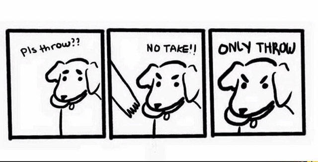 Anyone Who Has A Dog Can Relate To This