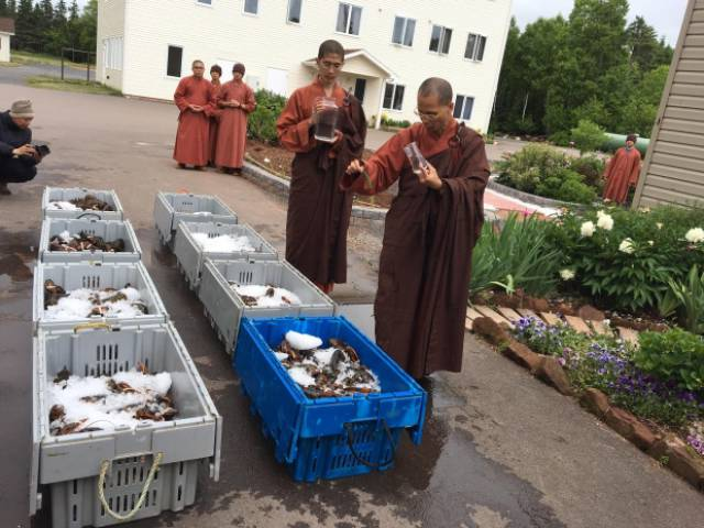 When The Monks Come To Town…
