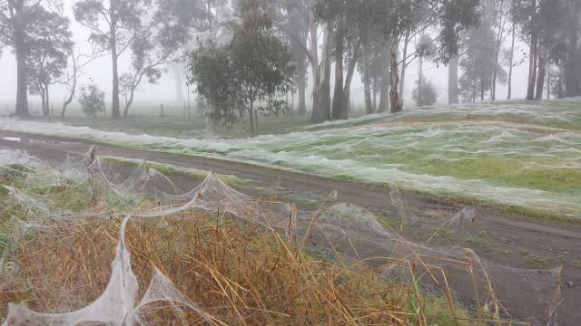 Is It Winter In Australia?