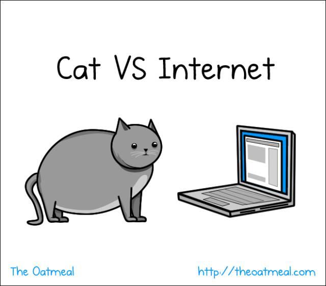 True Comics That Cat Lovers Will Understand