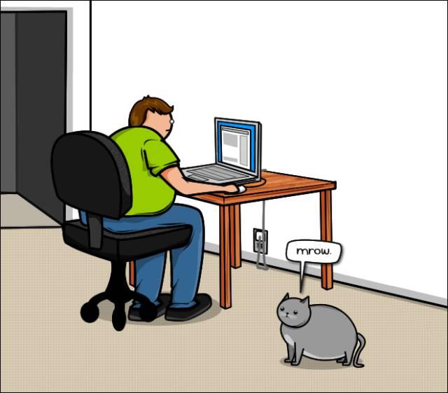 True Comics That Cat Lovers Will Understand