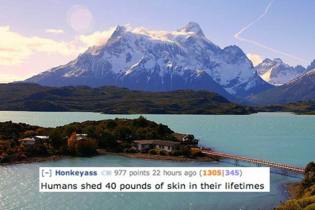 Are You Sure You Want To Know It? Gruesome Reddit Comments On Some Features Of Human Body