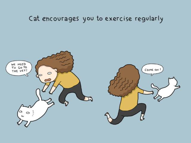 You NEED To Have A Cat Because…