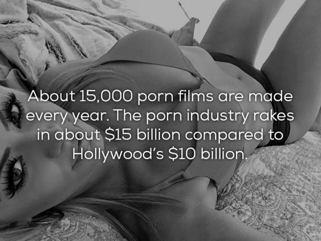 Some Interesting Porn Facts
