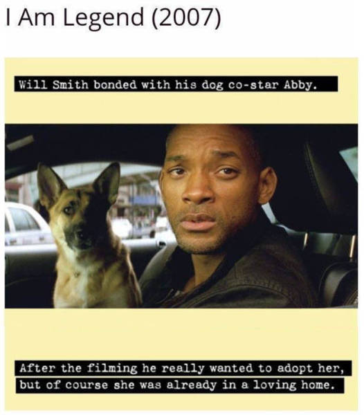 Great Movie Facts That Will Amaze You