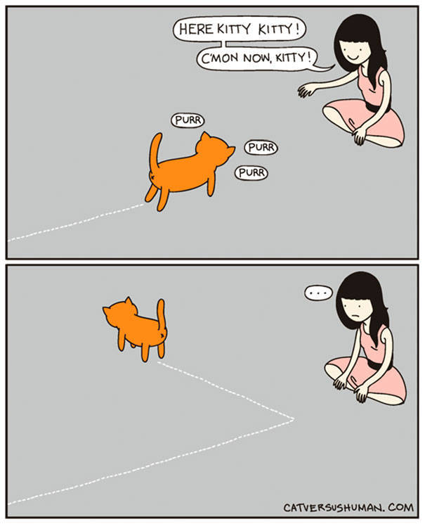 This Comics Perfectly Sums Up A Life With A Cat