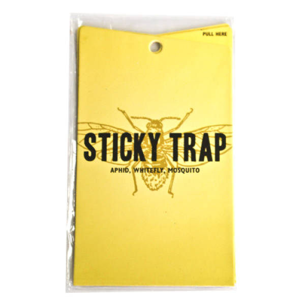 Just About Anything Can Get Stuck In A Sticky Trap