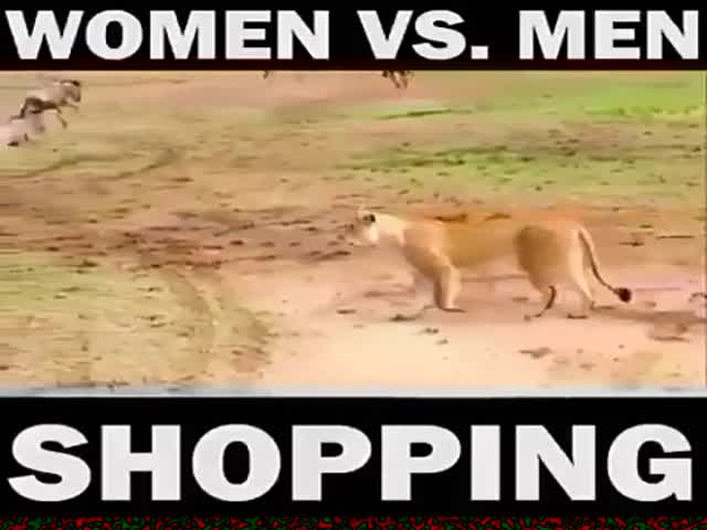 Women vs Men Shopping