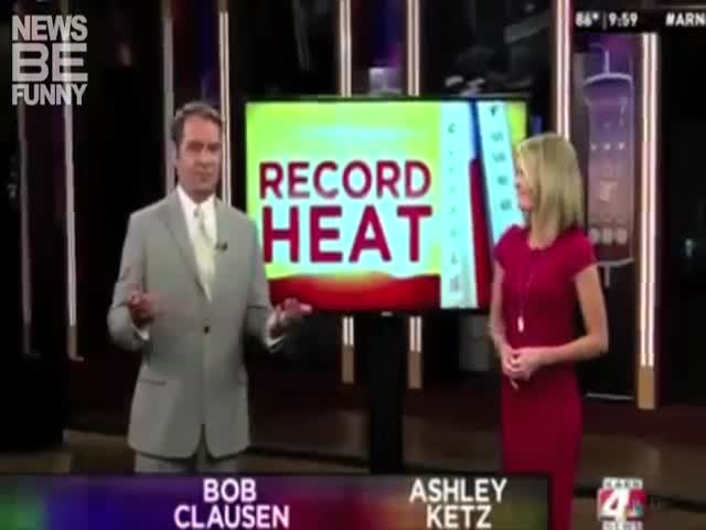 The Funniest Live News Broadcasts Fails Of July