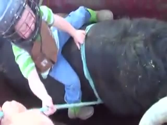 3-Year-Old Riding A Bull